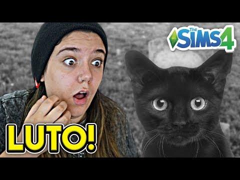 MEU GATINHO SE FOI! - Do Lixo ao Luxo 2 (The Sims 4) thumbnail