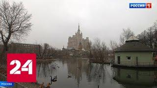 Минусы плюсовой погоды: в Москве ожидается новый температурный максимум - Россия 24