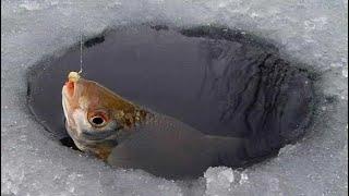 Зимняя рыбалка как это было ловля плотвы самодельные мормышки