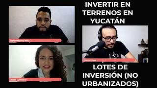 Invertir en TERRENOS en YUCATÁN  💵🏝️🏡 (Lotes de Inversión)