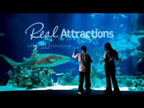 Visit Hull & East Yorkshire P&O Ferries Promo - Film and Video Production
