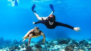 AMAZING CLEAR WATER FREE DIVING Deep Sea Jetski Jigging (Friendly Turtle) - Ep 107