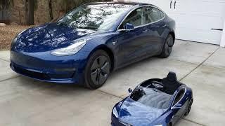 Model S vs Model 3 Plus Bonus Radio Flyer Comparison - Which would you choose?