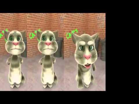 Tải game Talking Tom Cat mèo nhái tiếng người