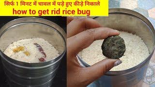 चावलों को साल भर के लिए स्टोर करने एवं चावलों से कीड़ा निकालने के लिए 6 अनोखे तरीके