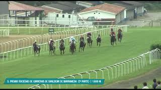 Vidéo de la course PMU SOCIEDAD DE CARRERAS DE SANLUCAR DE BARRAMEDA (HANDICAP 2E EPREUVE)