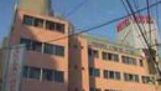 Tokyo Sakura Hostel - The Promotion Movie