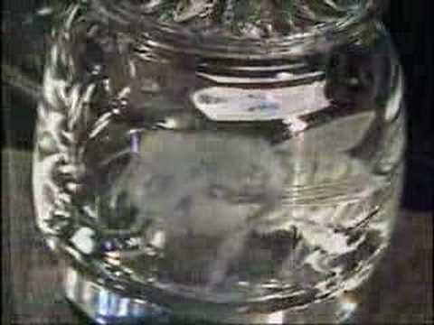 Glass Engraving by L. Pyke - Cambridge Glass Fair Sept. 2006