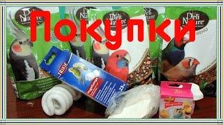Покупки из зоомагазина для попугаев корелл и воробьев. Воробей Тоша любопытствует.