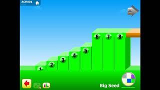 St Math 4-7 Big Seed