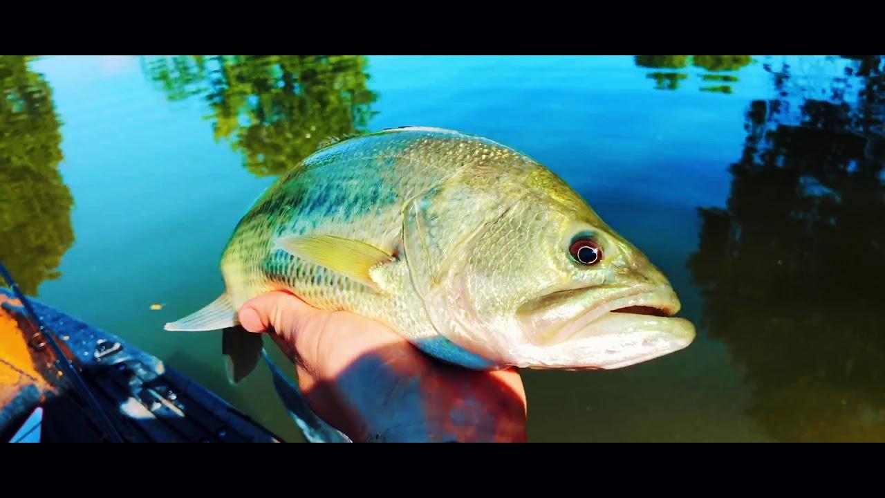 Рыбалка кастинговой сетью, я и не знал, что так можно!