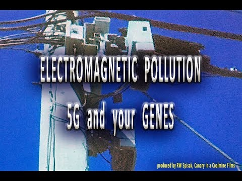 Presentation at the St. Lucie Conservation Alliance on Electronic Pollution Especially 5G