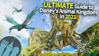The Ultimate Guide to Disneys Animal Kingdom in 2021!