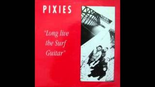 Pixies - Dancing The Manta Ray (Live at Gloucester Leisure Centre)