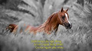 Ngựa Ô Thương Nhớ   Phạm Anh Khoa