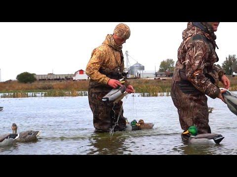 Early Season Nebraska Marsh Duck Hunt 2015