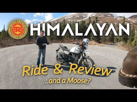 Long: 2018 Royal Enfield Himalayan Ride, Review and... a Moose?
