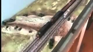 Wagga Wagga Model Rail Exhibition 2011