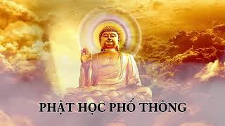 ❤22 tập Phật học phổ thông phần 18❤