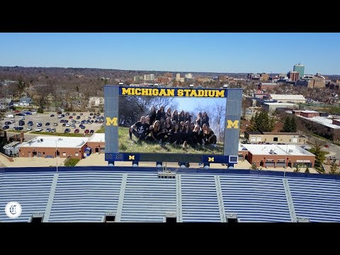 University of Michigan Delta Gamma Recruitment Video 2017