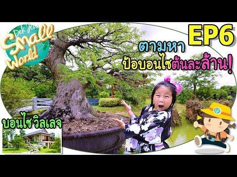 เด็กจิ๋วตามหาบอนไซต้นละล้าน!!! (บอนไซ วิลเลจ สวนผึ้ง Ep6) - วันที่ 20 Jul 2018