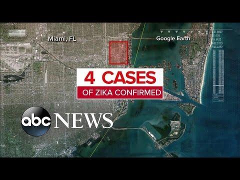 Zika Virus Arrives In Florida