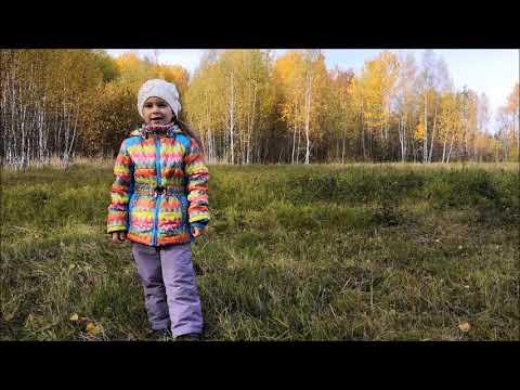 Изображение предпросмотра прочтения – ЕкатеринаСтепанова читает произведение «Осень.» И.С.Тургенева