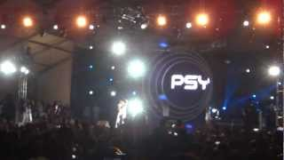 Psy on Flamingo Stage for Future Music Festival Asia - March 16, 2013
