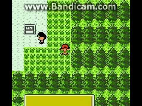 Lets Play Together Pokemon Kristall Edition Part 9 Skaraborn Wir Aufgefresht