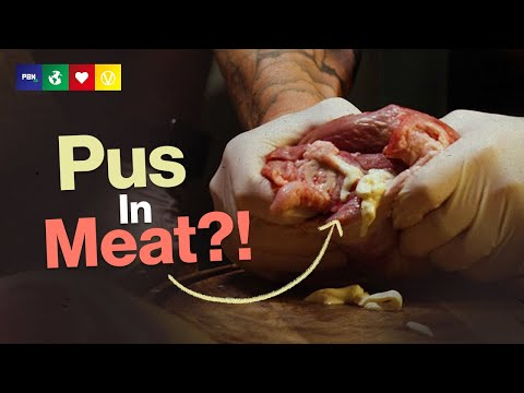 Huge Pus - The Gross Reality Of The Meat Industry
