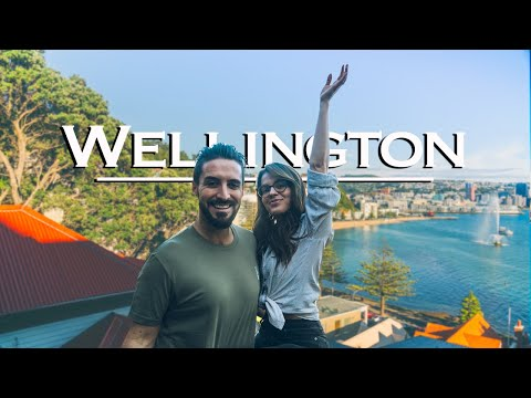 Wellington Travel Vlog