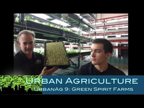Urban Agriculture 9: Green Spirit Farms