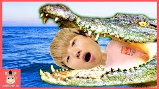상어가족 상어 악어 꾸러기 미니 괴롭히는 말이야 혼내줘요! 어린이 워터파크 물놀이 ♡ 도티 잠뜰 색깔놀이 장난감 놀이 crocodile | 말이야와아이들 MariAndKids