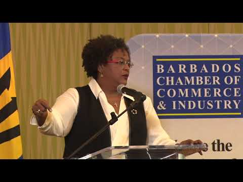 BCCI Luncheon: Address by the Leader of the Opposition, Hon. Mia Amor Mottley Q.C., M.P.