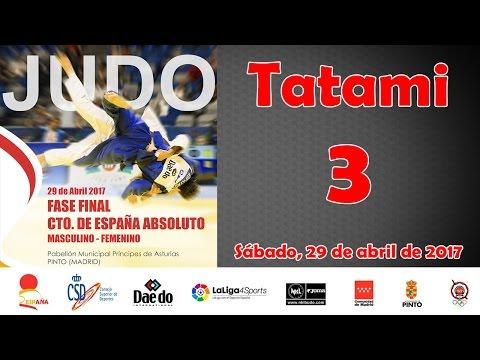 Campeonato de España Absoluto de Judo 2017 - Tatami 3