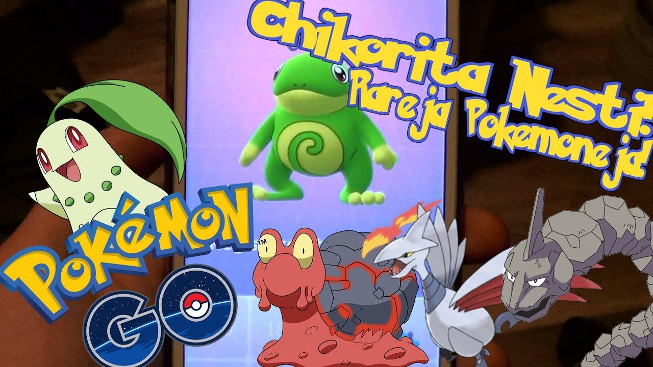 Pokemon GO Suomi - CHIKORITA NESTI! HARVINAISIA POKEMONEJA! 5Km & 2Km Munia - YouTube