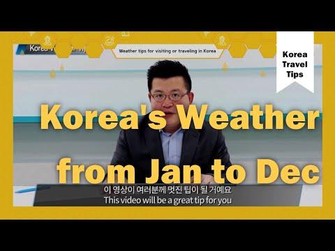 Korea's Weather From January To December! | Korea Travel Tips