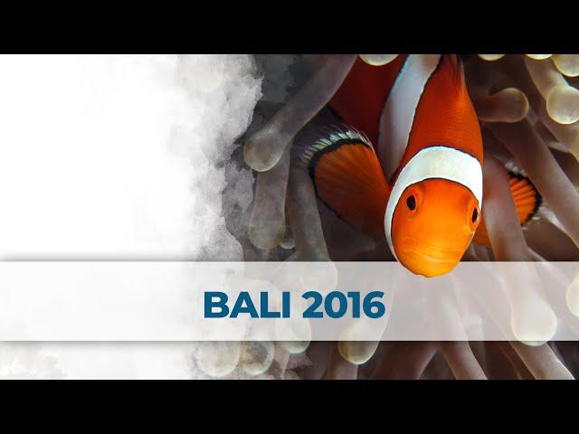 2 Little Divers - Buceo / Diving Bali 2016