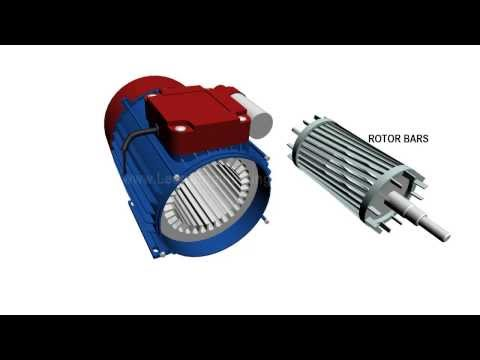 Single Phase Induction Motor, How it works ?