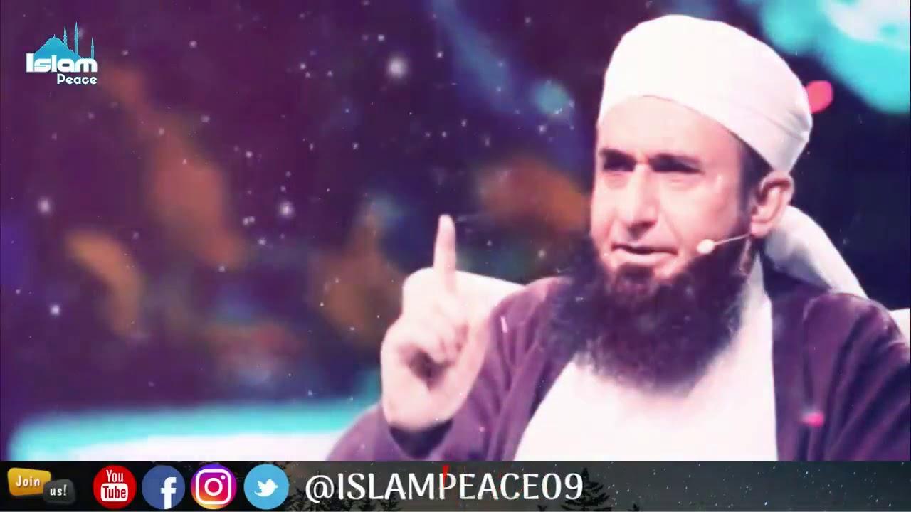Islamic whatsapp status || Molana Tariq Jameel Sb - YouTube