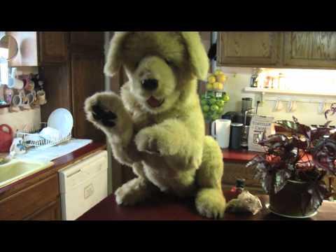 Animatronic Fur Real Biscuit Dog Doovi