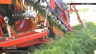 Sator XXL - Kombajn do marchwi z platformą łańcuchową / Carrot Harvester with Chain Platform
