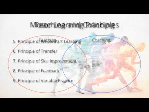 KIN 345 Motor Learning Principles