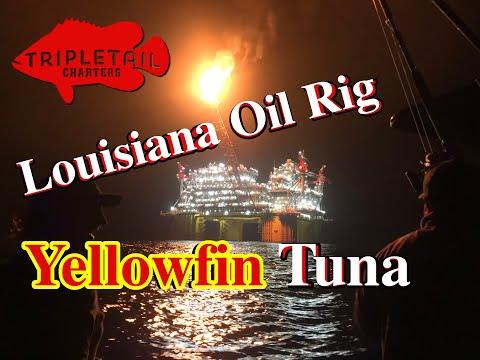Louisiana Oil Rig Yellowfin Tuna