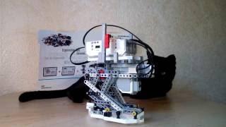Двуногий шагающий робот DINO 5E (Biped Walker Robot)