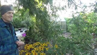 Matthew's Eastern Oregon Back to Eden garden July 2019 - L2Survive with Thatnub