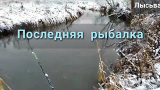 предпоследняя летняя рыбалка рыбалка на реке Березовка