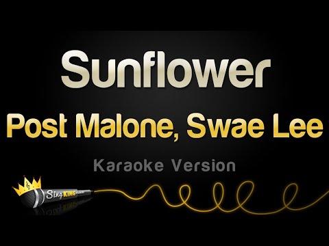 Post Malone Swae Lee - Sunflower Karaoke