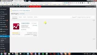 How to add Google Analytics plugin in WordPress