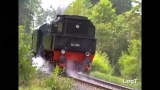 58 311 + 24 009 + 94 1292 Dampfsonderzug zum Dampfloktreffen in Gerolstein 1993